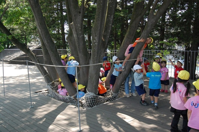Children gather around the large zelkova trees.