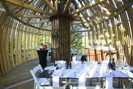 Tree-top dining in a fairytale setting