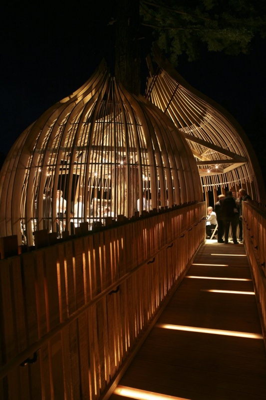 Illuminated treetop walkway to the restaurant