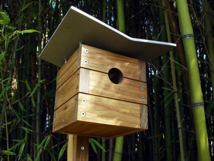 Ralph Birdhouse