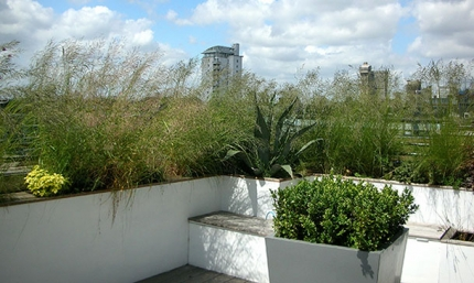 Docklands Garden Design