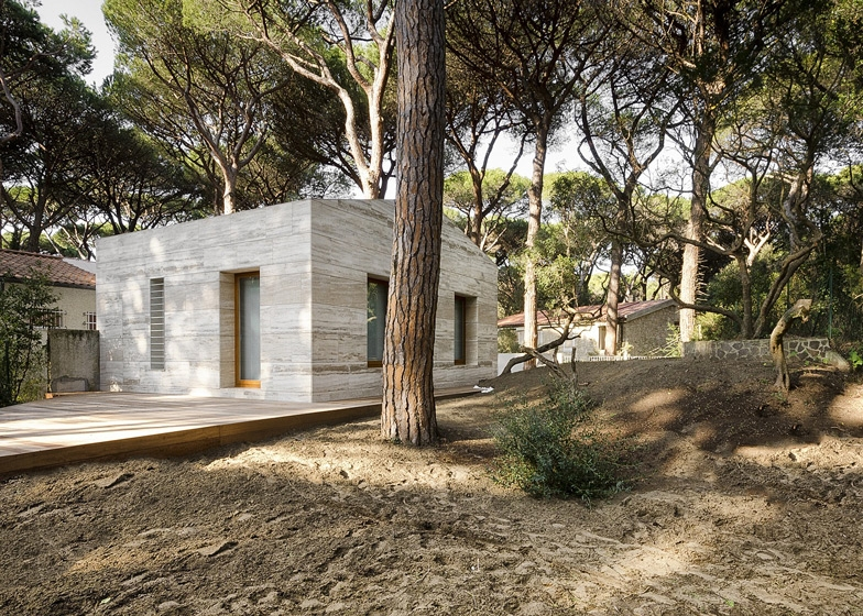 House in a Pine Wood